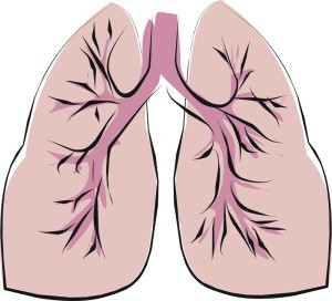 Exercises To Increase Lung Capacity Breathe Pa